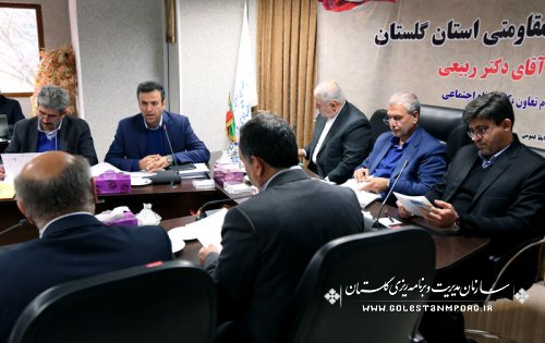 پیش قدم: در چیدمان پروژه ها در کشور استان گلستان هم سهمی داشته باشد.