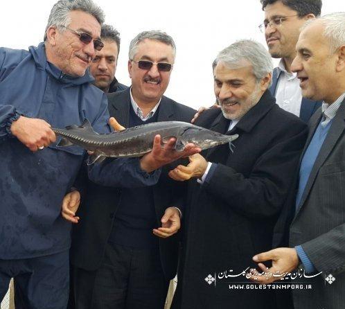 بازدید دکتر نوبخت از جزیره آشوراده و مرکز پرورش ماهیان خاویاری
