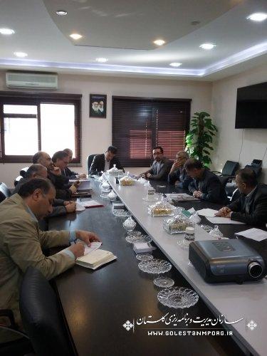 بررسی پروژه های اقتصاد مقاومتی روستای محمد آباد گرگان با حضور رئیس سازمان ومسئولین استان
