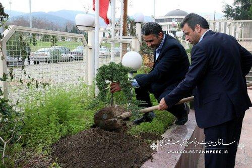 غرس نهال توسط رئیس سازمان مدیریت و برنامه ریزی استان بمناسبت هفته منابع طبیعی