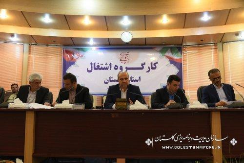 حضور رئیس سازمان مدیریت و برنامه ریزی در کارگروه اشتغال استان گلستان