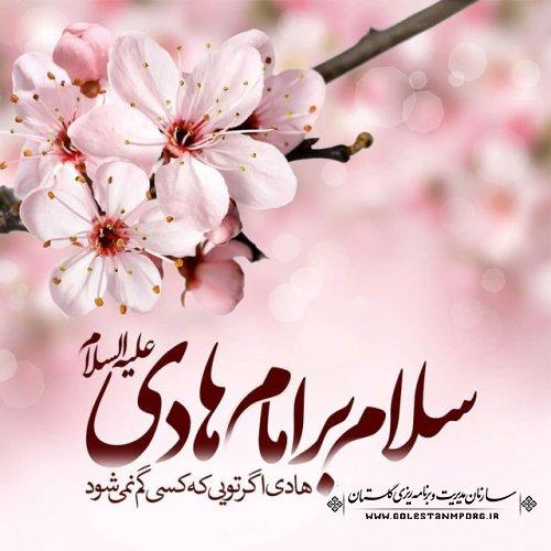 میلاد با سعادت امام هادی علیه السلام مبارک باد.
