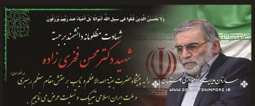 پیام تسلیت رئیس سازمان مدیریت و برنامه ریزی استان گلستان در پی شهادت دانشمند هسته ای کشور