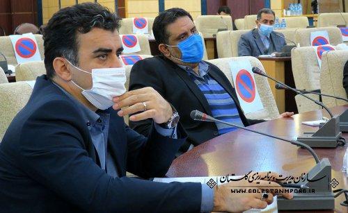 رئیس سازمان مدیریت و برنامه ریزی استان گلستان در کارگروه اقتصادی،اشتغال و سرمایه گذاری استان