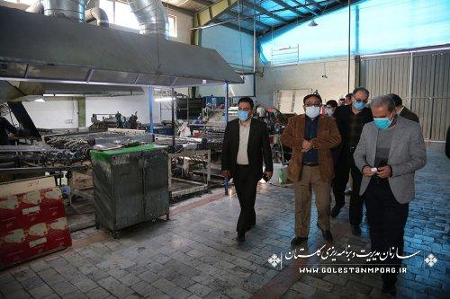 بازدید سازمان مدیریت و برنامه ریزی استان گلستان از شرکت یکتاظرف سرخنکلاته