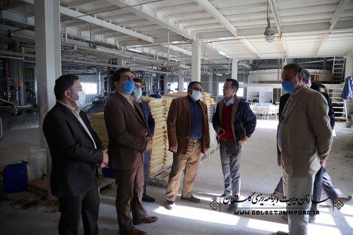 بازدید سازمان مدیریت و برنامه ریزی استان گلستان از شرکت بانیار گنبد