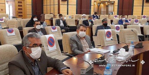 رئیس سازمان مدیریت و برنامه ریزی استان گلستان در جلسه ستاد استانی ستاد پیشگیری و مقابله با کرونا